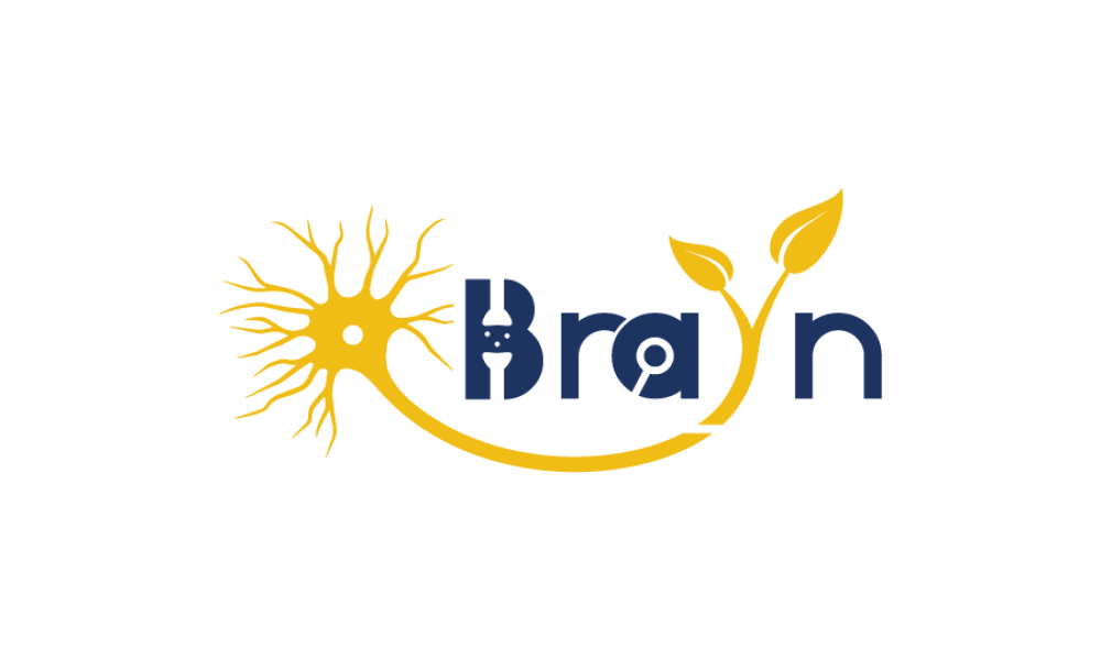 BraYn2020-900x600w