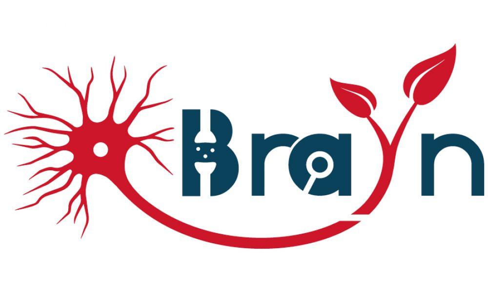 Logo BRAYN 21-900X600